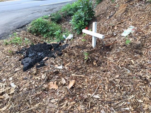 Memorial set up for James Searcy (Aug. 10, 2017/FOX Carolina)