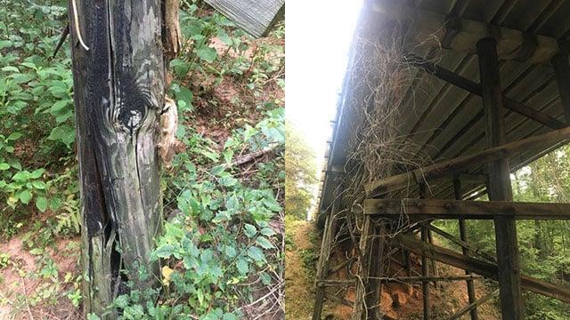 Repairs needed to bridge over Wolf's Creek (Source: SCDOT)