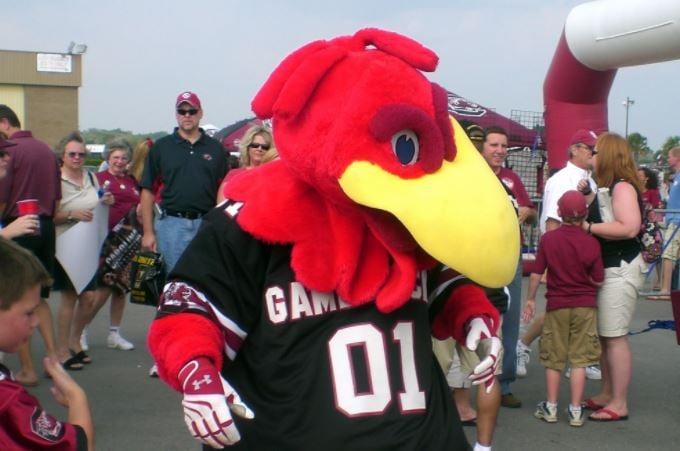 Cocky, USC's mascot (Wikimedia Commons)