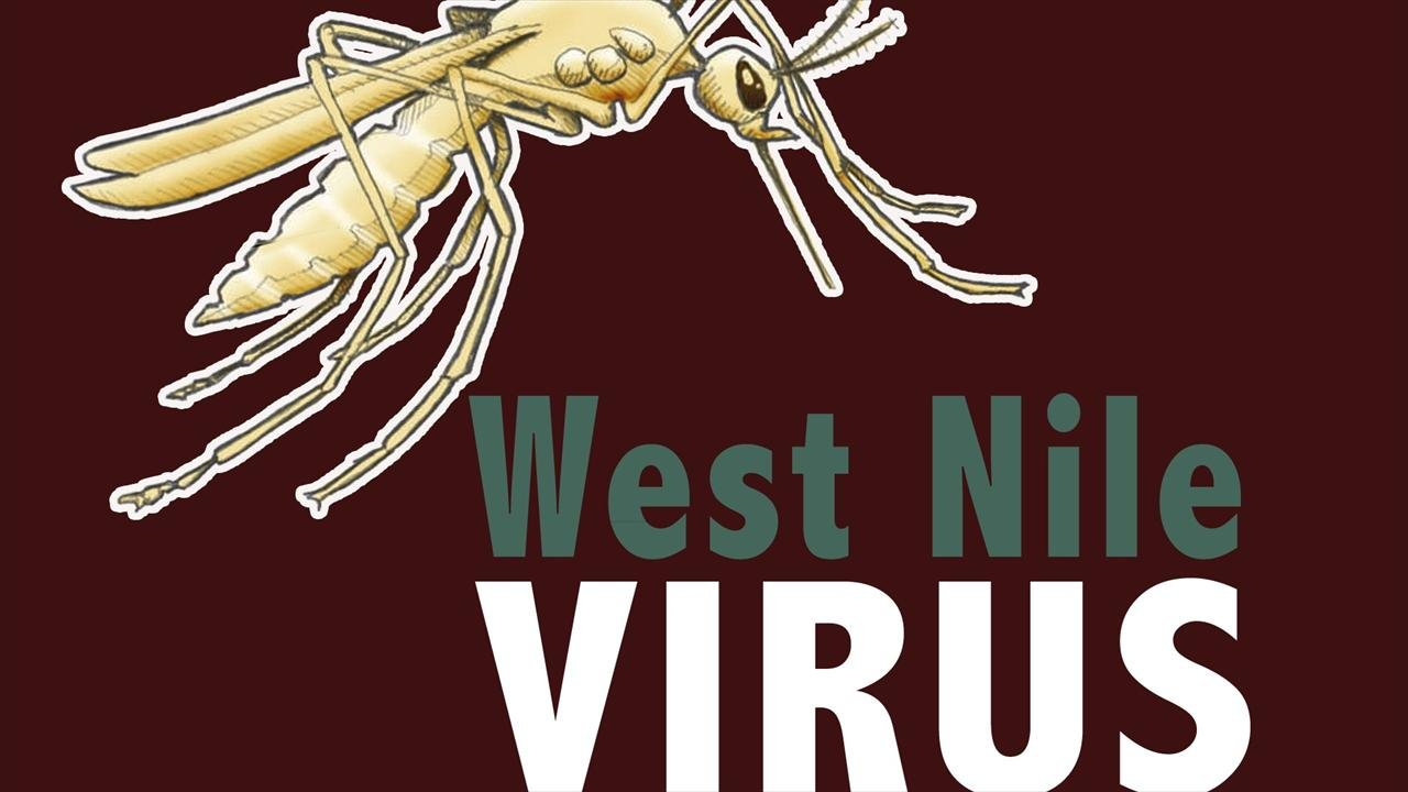 First West Nile Virus Death in SC for 2017 Reported By DHEC