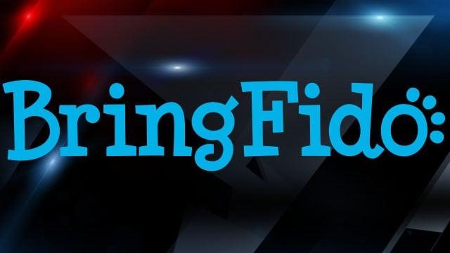 BringFido logo (provided)