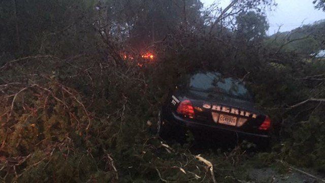 Deputy trapped under tree. (Source: ACSO)