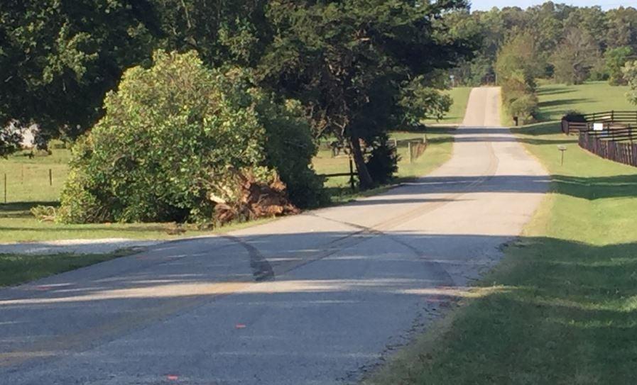 Area where the crash occurred on Switzer Greenpond Road (FOX Carolina/ Sep. 29, 2017)