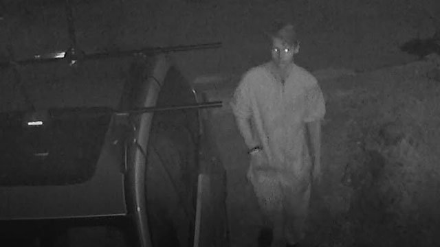 Police are looking for this individual they say tampered with vehicles in the Garraux Street area Monday night. (Source: GPD)
