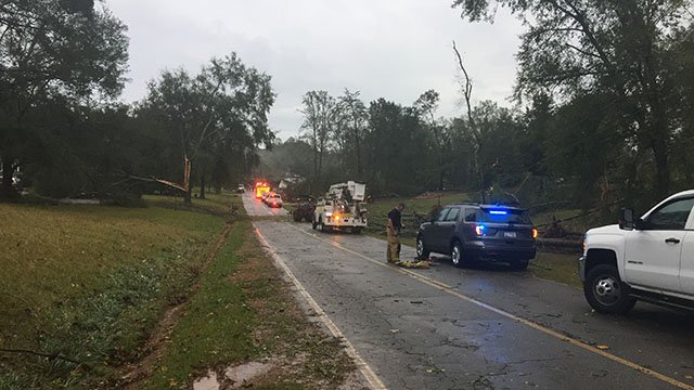 Tree down on Robinson Bridge Road. (10/8/17 FOX Carolina)