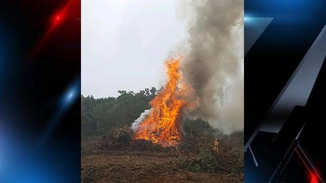Controlled burn in Cherrydale. (10/9/17 FOX Carolina)