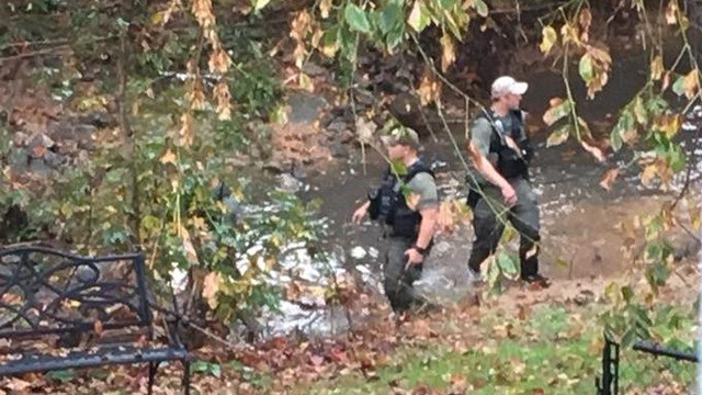 Investigators searching for suspect in woods off Grandview Dr. (Source: Eyewitness)