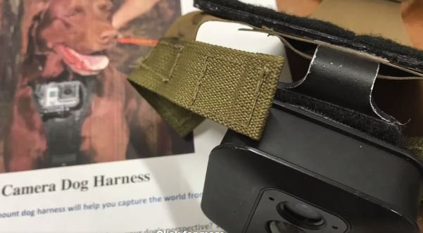Photo of the camera and harness (Source: Greenville Co. Schools)
