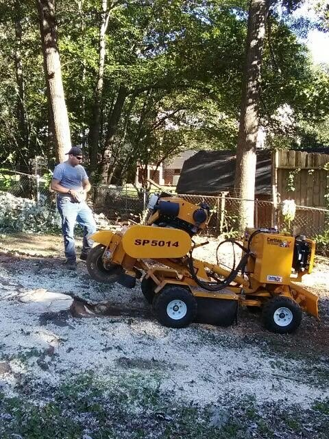 Keith Rebman working for McKenzie Tree Service (Source: McKenzie Tree Service)