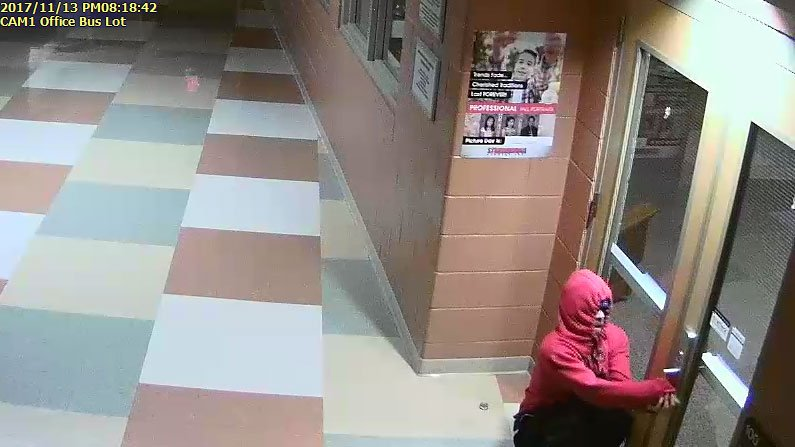 Suspect in Bethel Elementary break-in (Source: Haywood Co. Sheriff's Office)