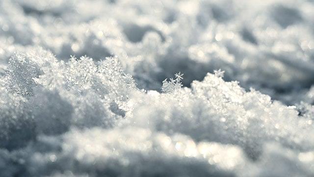 Snowflakes (Source: Storyblocks)