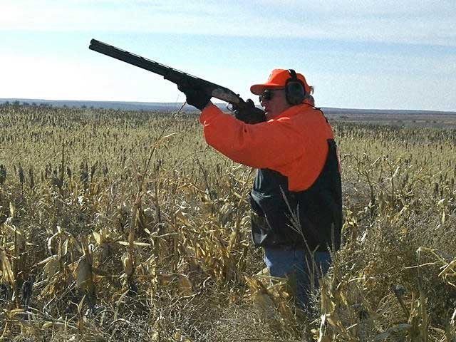 Nc reminds hunters of rules on 39 10 mile cloth 39 fox for Iowa out of state fishing license