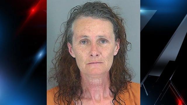 Donna Marie Leo (Source: Spartanburg Co. Detention)