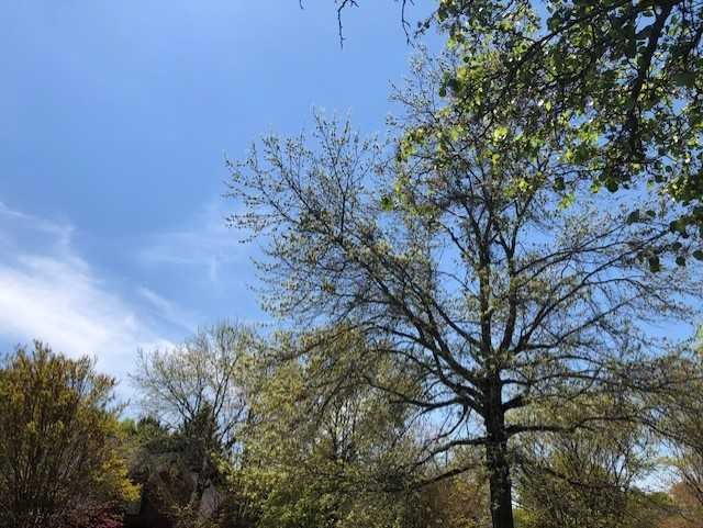 First Alert Weather: Unsettled Weather This Week