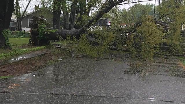 Beatrice Street. (FOX Carolina/April 15, 2018).