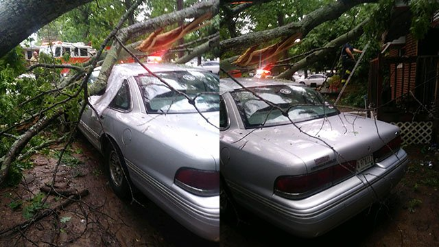 Tree on car in Spartanburg (Source: iWitness)