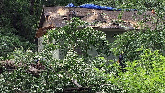 Tree Crashes Through Roof Of Greenville Community Center