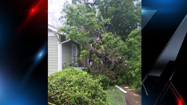 Tree falls onto home on Greenville Street.