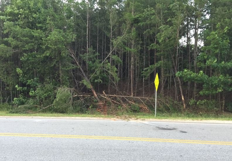 Area where the crash occurred on Hwy 11 (FOX Carolina/ June 19, 2018)
