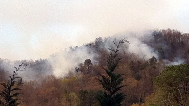 Smoke rises from a hillside near Mills River as crews battle the wildfire. (March 27, 2012/FOX Carolina)