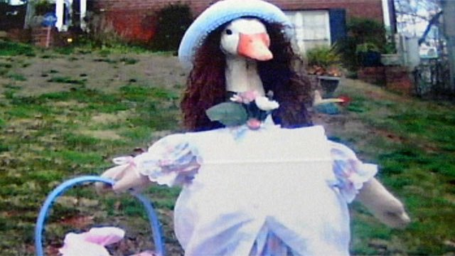 A photo of Lucy Allison the goose before she was stolen from Aiken's Alta Vista Circle home in Travelers Rest. (Courtesy Barbara Aiken)
