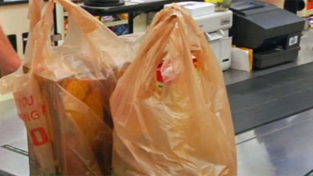 A shopper's groceries are placed in plastic bags at an Upstate Bi-Lo store. (File/FOX Carolina)