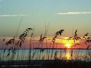 This is a photo from Edisto Island, SC