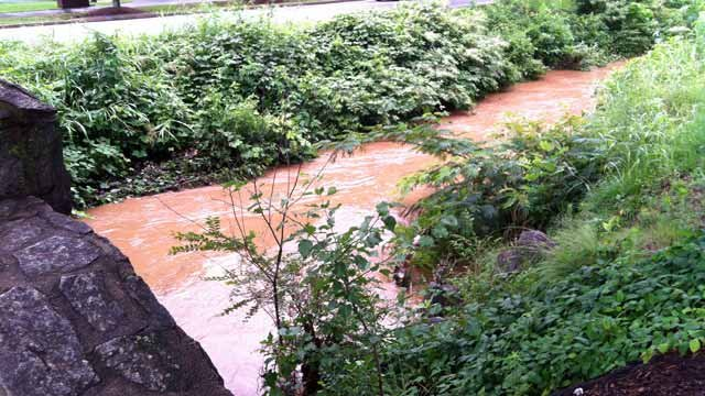 The Reedy River rises after heavy rain moved through Greenville Co. Thursday. (June 14, 2012/FOX Carolina)