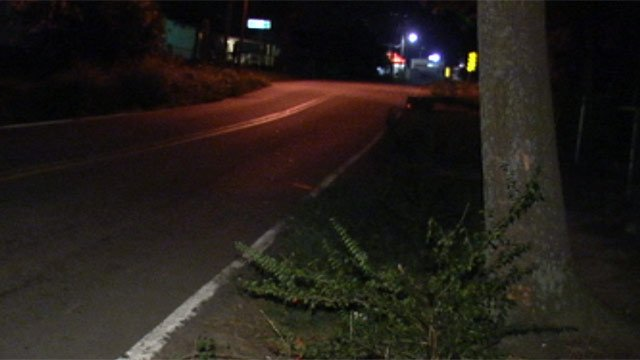 The area along Lewis Street where the driver crashed. (July 10, 2012/FOX Carolina)