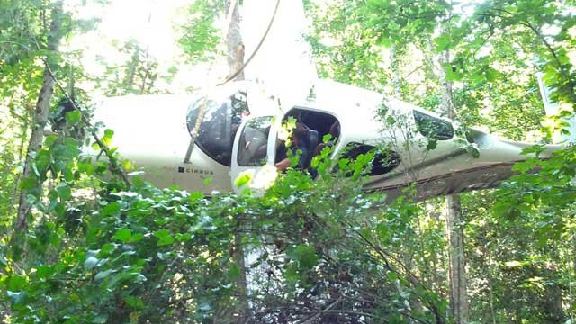 A plane crash landed in the trees in Liberty. (July 22, 2012/Courtesy Jonathan Browder)