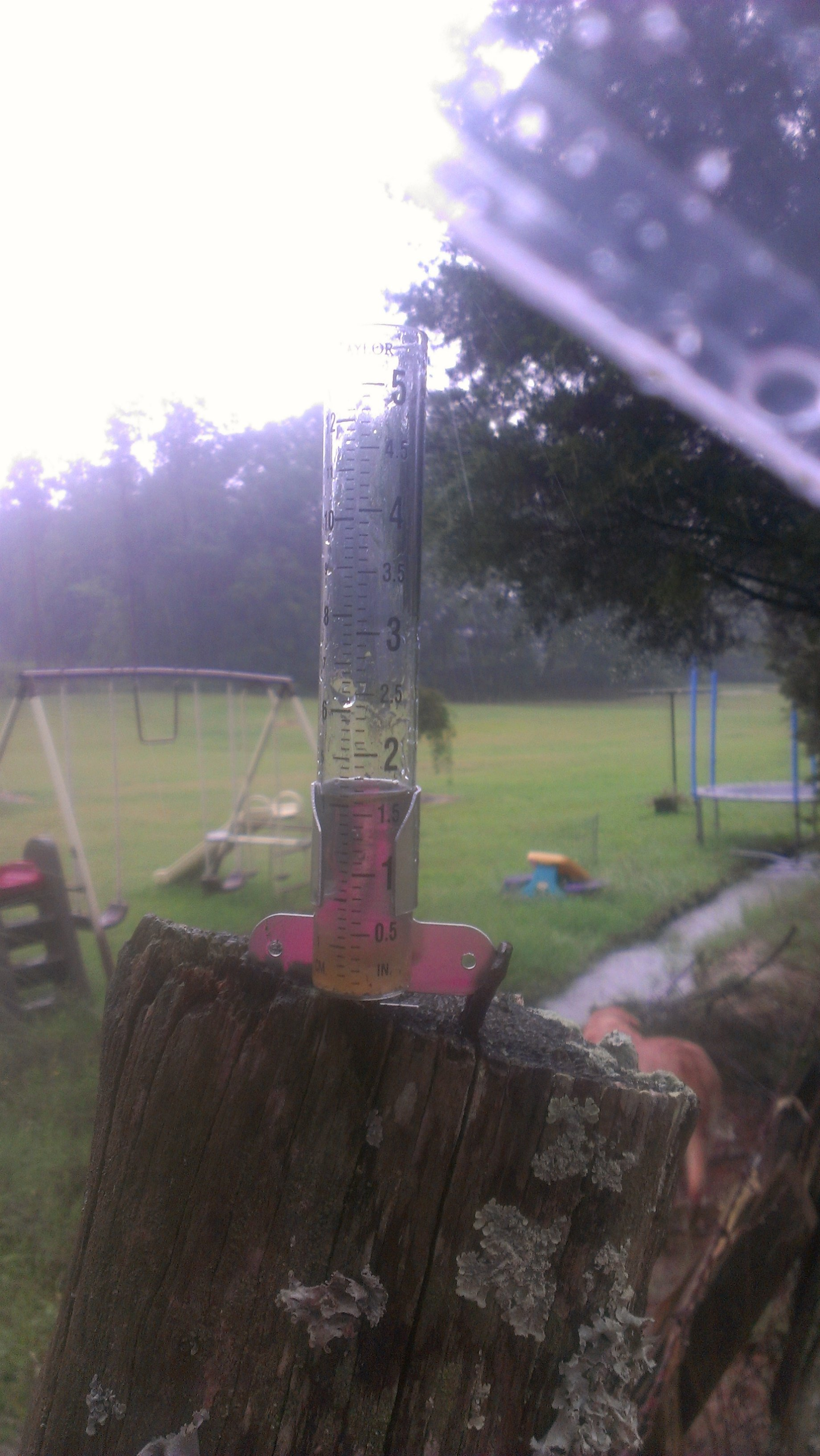 From Candice in Fountain Inn