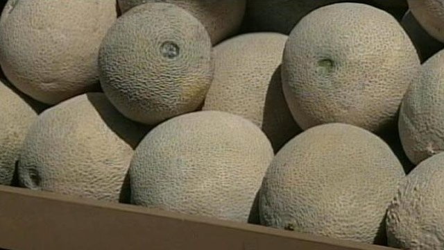 A popular variety of cantaloupe have been recalled at some local stores. (File/FOX Carolina)