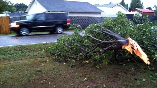 A tree knocked down near Hazelwood Ave. and Monitor Drive in Anderson. (Oct. 2, 2012/FOX Carolina)