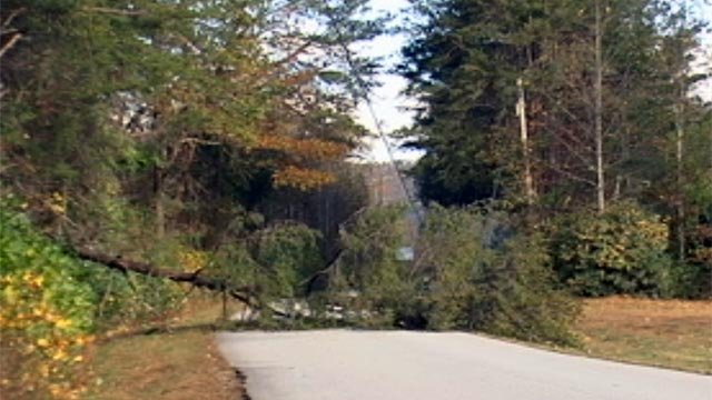 Winds knocked down trees in the Upstate on Monday. (Oct. 29, 2012/FOX Carolina)