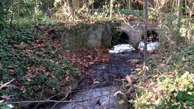 Sandbags are stacked at the mouth of two culverts in Greenville after a wastewater spill. (Dec. 3, 2012/FOX Carolina)