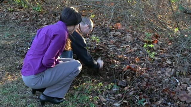 Ryan Croft digs for earthworms as a source of protein. (Dec. 18, 2012/FOX Carolina)
