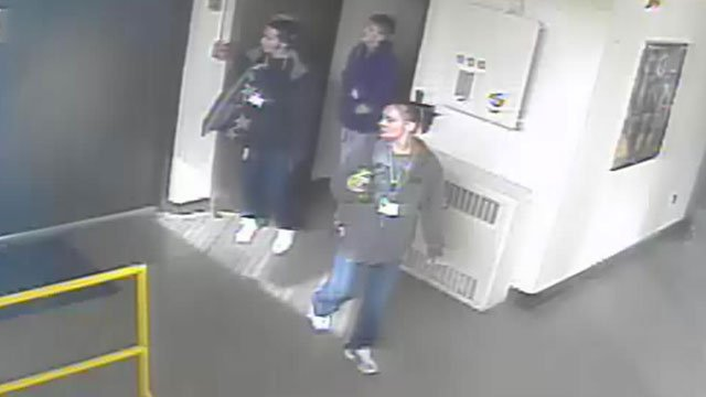 Deputies say these three people visited PARI a few days before more than 100 meteorites were stolen. (Transylvania Co. Sheriff's Office)