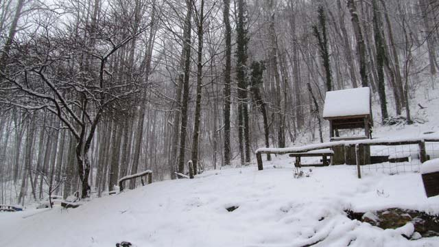 A snow covered backyard in Jackson County, NC. (Mar. 6, 2013/FOX Carolina iWitness)