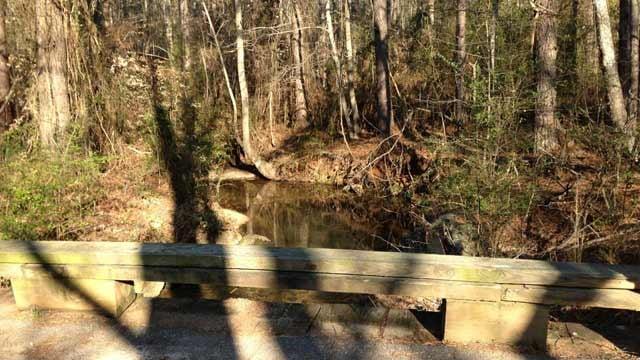 Deputies say the body was found underneath this bridge along the creek. (Mar. 14, 2013/FOX Carolina)