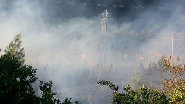 Brush fire scorches land in Carolina Forest. (Source: WMBF)