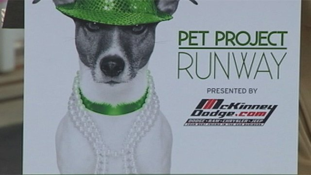 Pet Project Runway is Thursday night at the Greenville Downtown Airport. (File/FOX Carolina)
