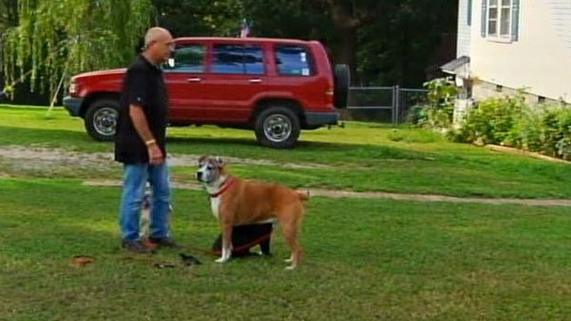 Bud Smith with his dogs. (July 30, 2013/FOX Carolina)