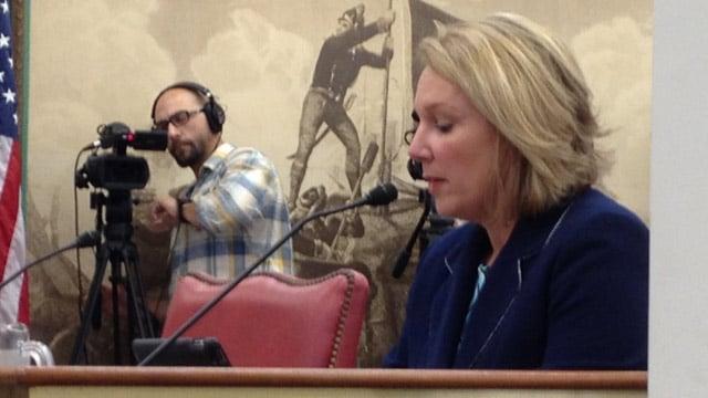 DHEC Director Catherine Templeton testifies. (Aug. 8, 2013/FOX Carolina)