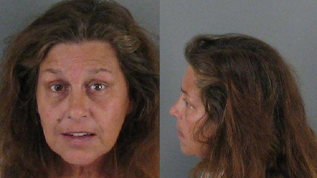 Tina Payne (Source: Gaston Co. Sheriff's Office)
