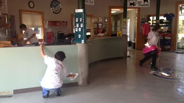 Crews clean inside Greenville County Animal Care on Sunday. (Aug. 25, 2013/FOX Carolina)
