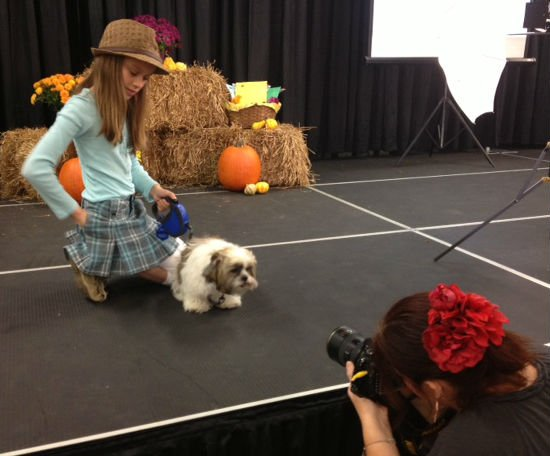 Dogs compete for fame at PuppyFest .