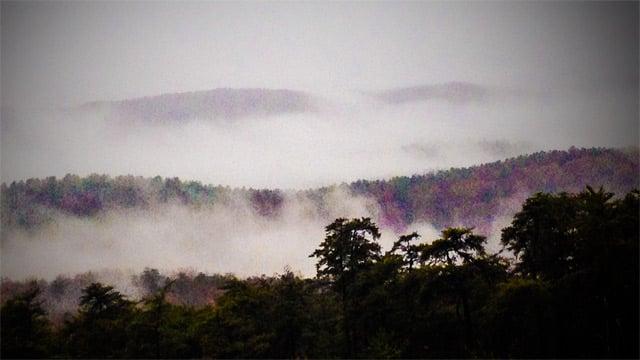 Fog rolls in.