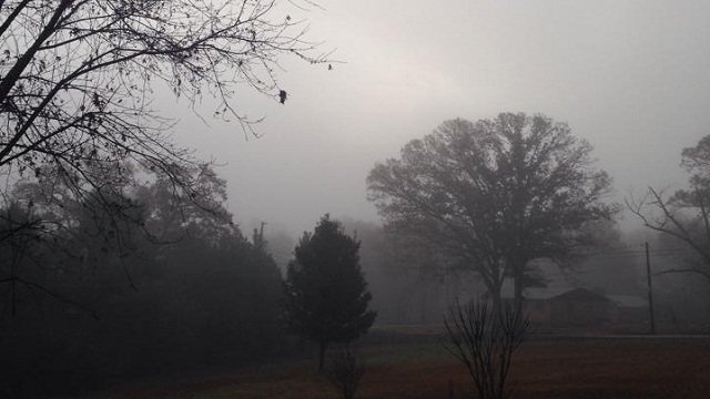 Foggy morning scene from Christi Laws