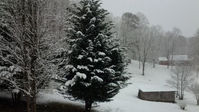 From Dee Boozer in Jackson Co.