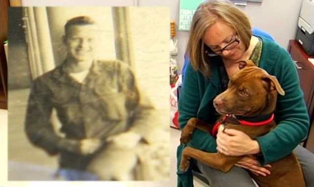 The photo found in Soldier's collar is on the left. (Jan. 21, 2014/FOX Carolina & Greenville Co. Animal Care)